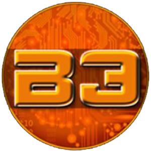 B3 Coin (B3)