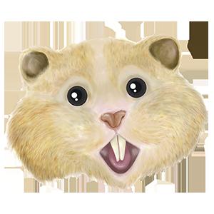 HamsterCoin (HAMS)