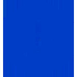 Jibrel Network Token (JNT)