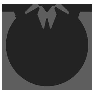 Dark Lisk (DISK)