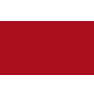 SingularDTV (SNGLS)