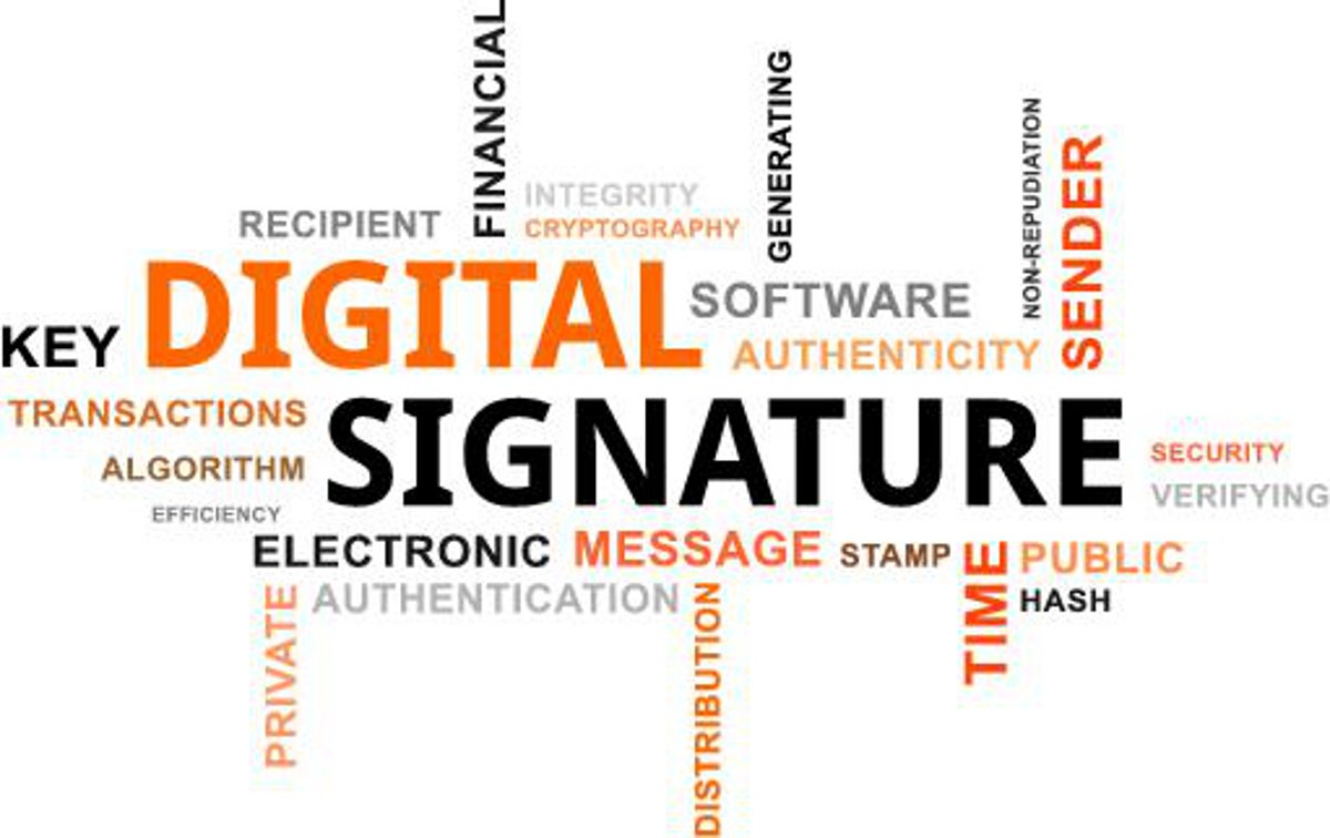 How do digital signatures in Bitcoin work? | CryptoCompare com