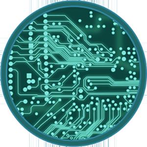 Logo CircuitCoin