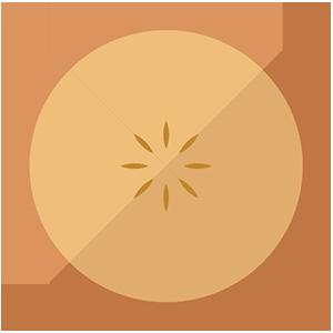 Logo Persistent Information Exchange