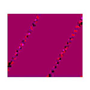 Logo Zennies