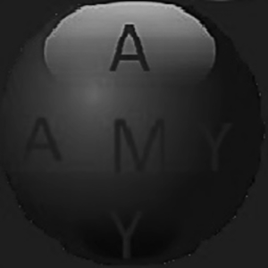 Logo Amygws