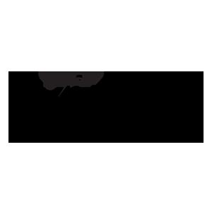 Logo Infinium-8