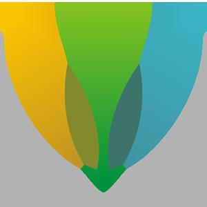 Logo Subscriptio