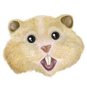 Logo HamsterCoin