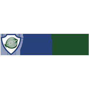 Precio DeepOnion