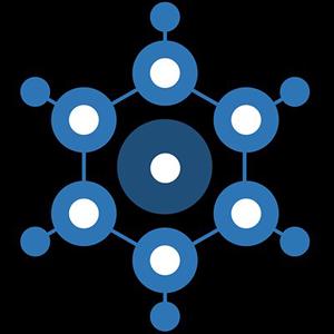 Logo BridgeCoin