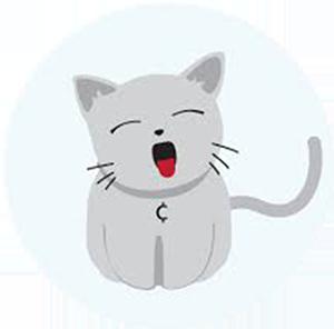 Logo Catcoin