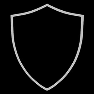 Logo ShieldCoin