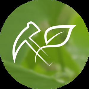 Logo MonetaVerde