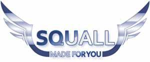 Logo Squall Coin