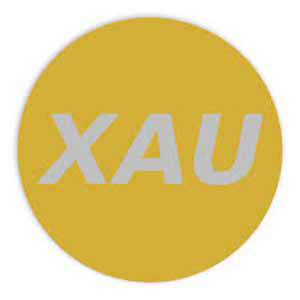 Logo XauCoin