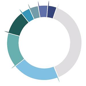 Logo Clinicoin