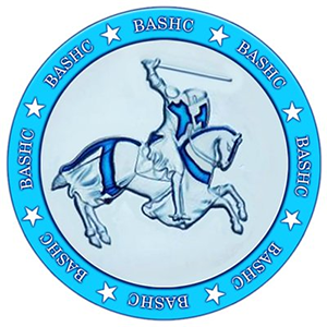 Logo BashCoin