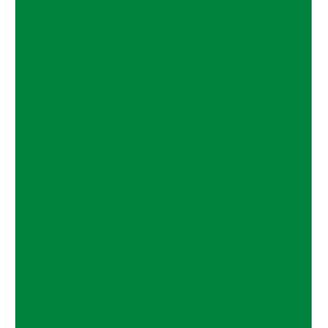 Logo TurtleCoin