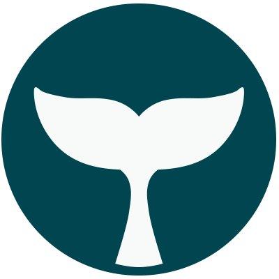 Logo BelugaPay