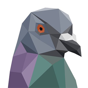 Logo Pigeoncoin