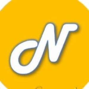 Logo Newton Coin