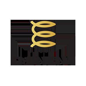 Logo Eminent Token
