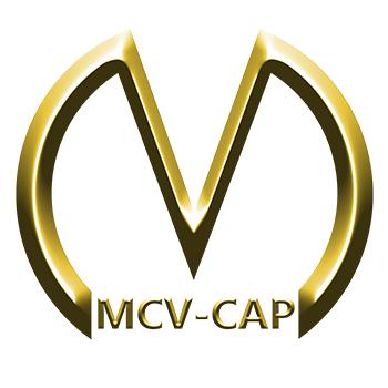 Logo MCV Token