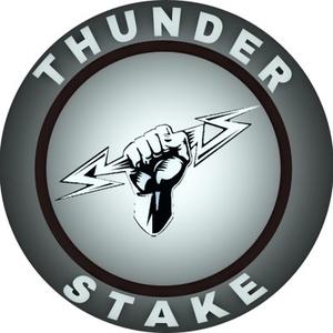 Logo ThunderStake