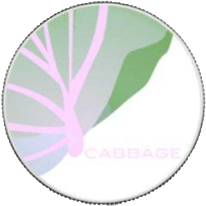 Logo CabbageUnit
