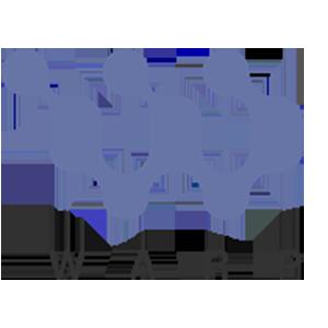 Logo WarpCoin
