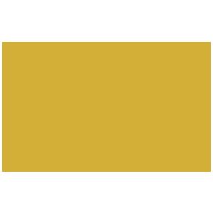 Precio GoldBlocks