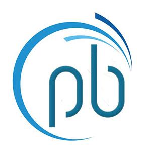 Logo PesoBit