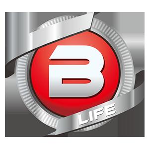Logo BigLifeCoin