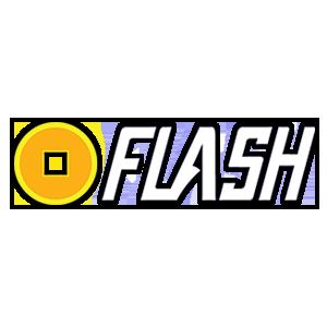 Logo MegaFlash