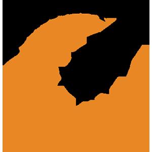 Logo PoolStamp