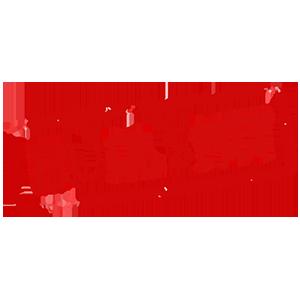 Logo BullshitCoin