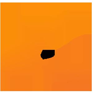 Logo BitConnect Coin